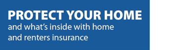 and what's inside with home & renters insurance