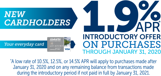 New cardholders introductory offer on purchases